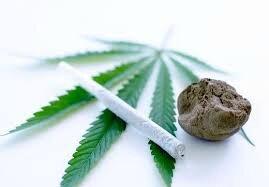 cannabis8