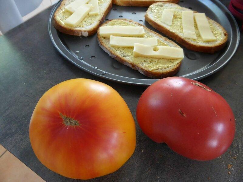 27-tomates, tomates tartines (5)