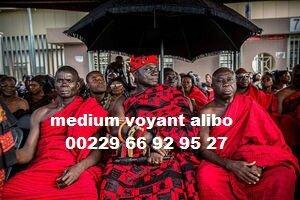 ALIBO (2)