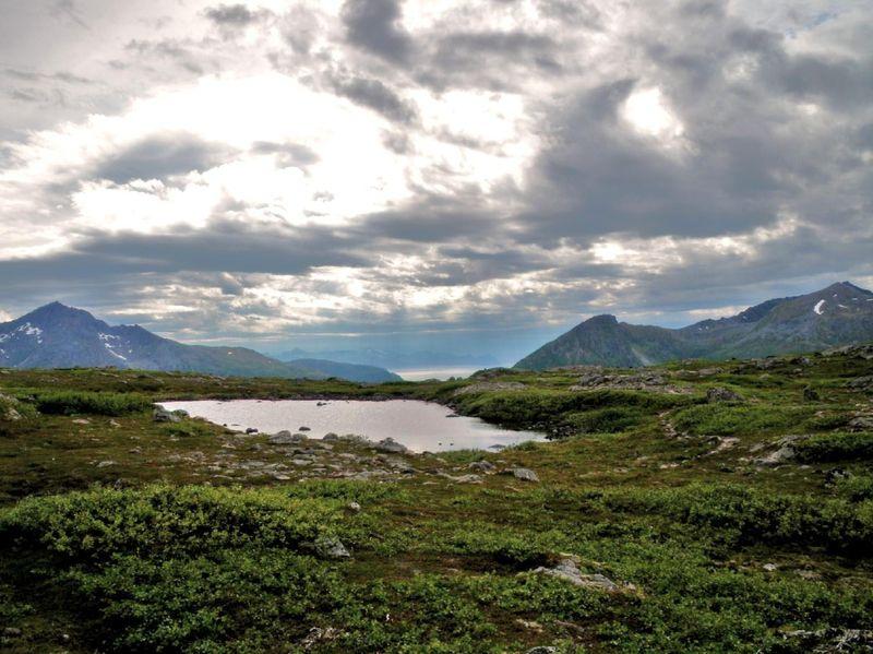 08 07 10 Grøtfjord (22)