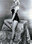 1953_by_florea_blackbody_032_1