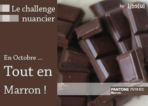 libelul-banner-challenge-nuancier1-201110