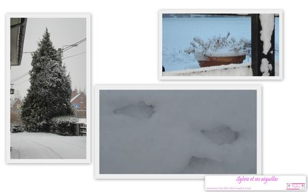 Mes images1