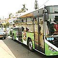 yaoundé: de nouveaux bus opérationnels