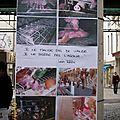 Journée Sans Viande 2013
