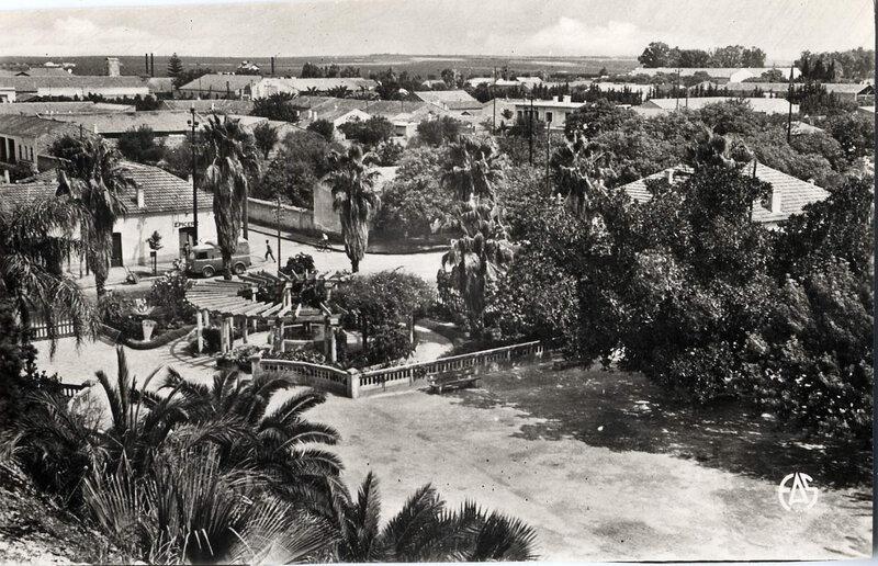 Hammam-bou-hadjar 515- Parc des vieux bains