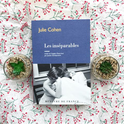 Les inséparables de Julie Cohen ©Kid Friendly