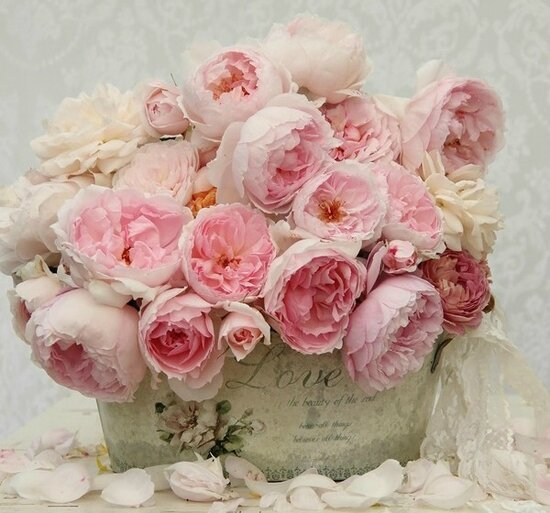 bouquet rose love