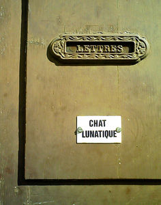 chat_lunatique