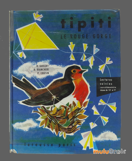 TIPITI-le-rouge-gorge-02-muluBrok