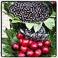 Vente de fruits dans la rue à suzhou