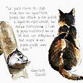 Le charme des chats