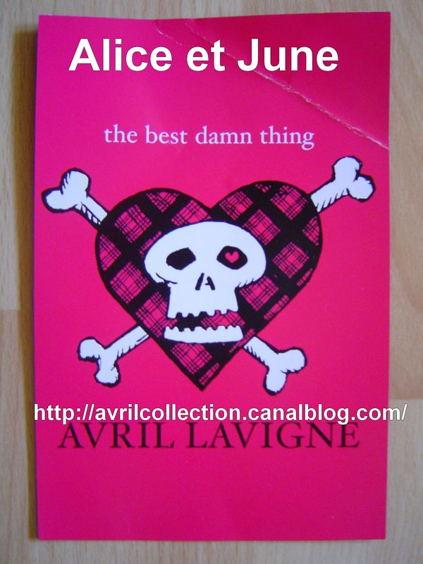 Carte The Best Damn Thing (2007)