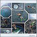 En plongée concours de la rentrée