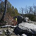 St Vallier dolmen (3)