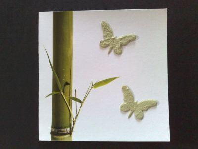 a_papillon__3