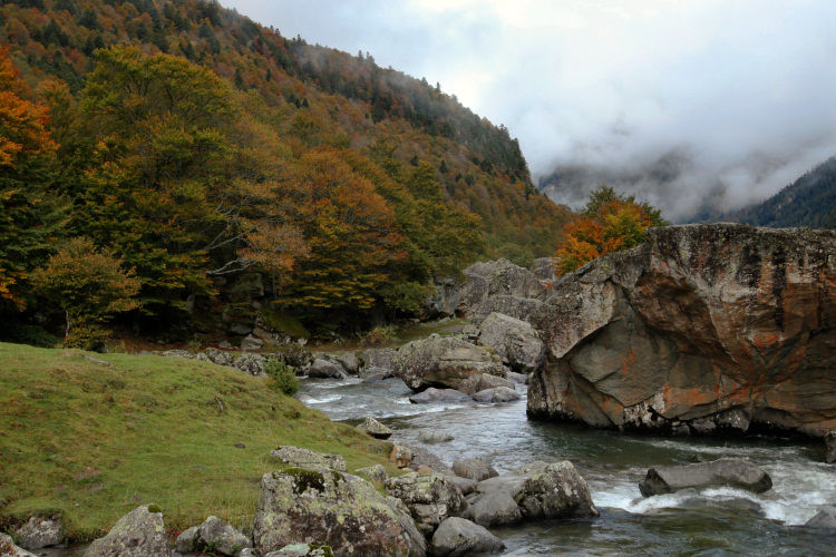 caillou_brume_10_11_10_1469a