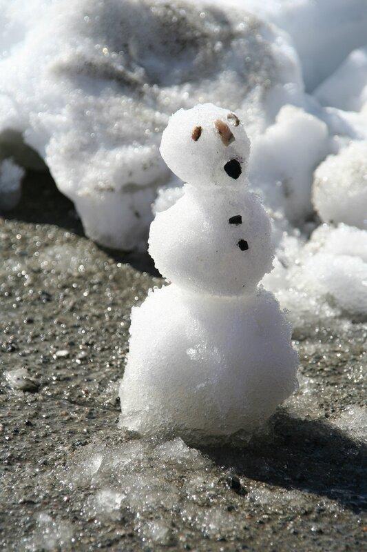 snowman in June