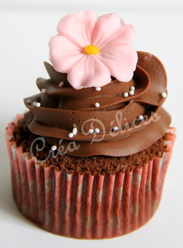 Cupcakes Chocolat