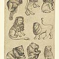 1435-1455 Rhin sup Constance à Mayence - 8 de Lion Ours - Maitre des cartes à jouer - gallica BnF
