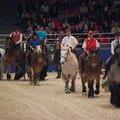 Salon du cheval 2007 - france trait
