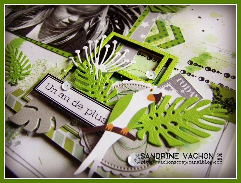 Sandrine VACHON embellissements BLOG PS-6