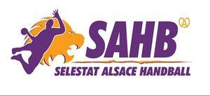401i_logos_sahb_a_coeur_caroussel