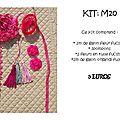 VENUD Kit M20