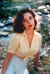 liz_taylor_chemisier_vichy_1957_by_Bob_Willoughby_4_1