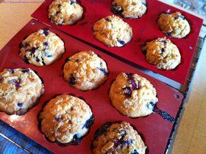 Muffins aux myrtilles (7)