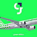 La future compagnie aerienne green africa...logo, livrée et identité de marque.