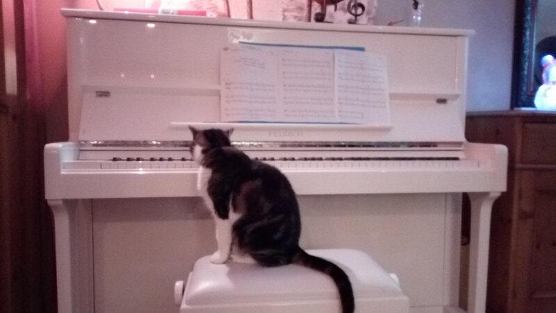 jose au piano