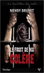 le-fruit-de-ma-colere-1001116-264-432